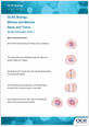 Mitosis and Meiosis activity - cover